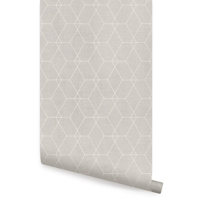 Hexagon Geometric Art Deco Lines - Warm Grey