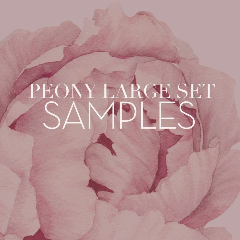 Large Peony Flowers Wall Sticker Samples