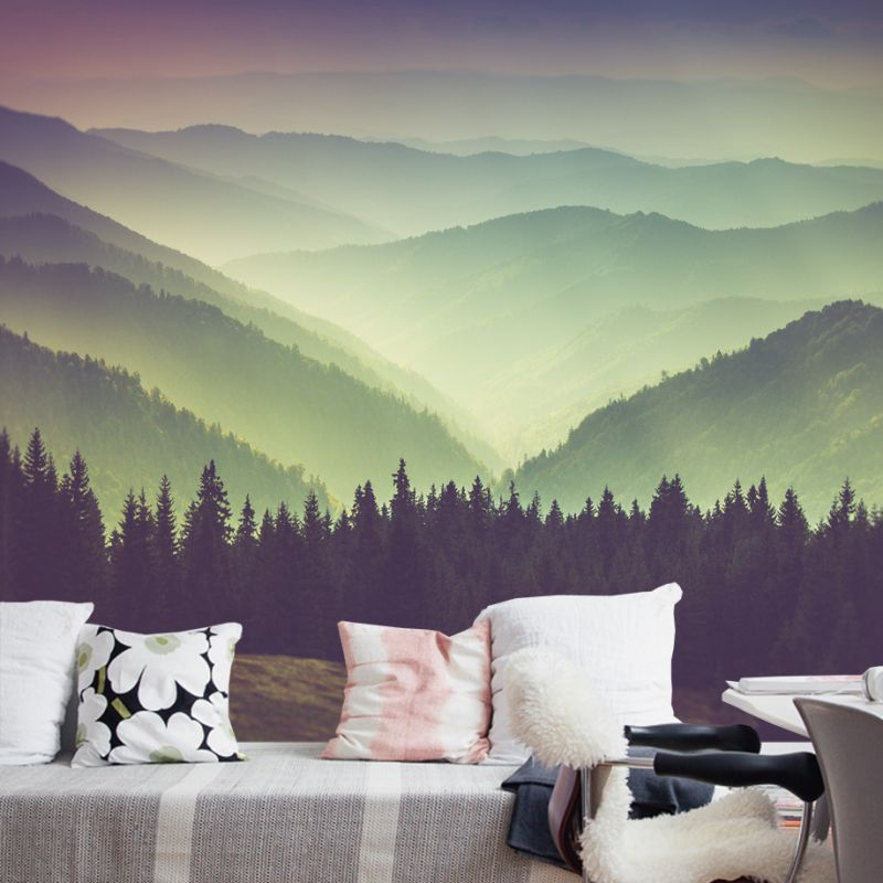 Mountain View Photograph Wall Art