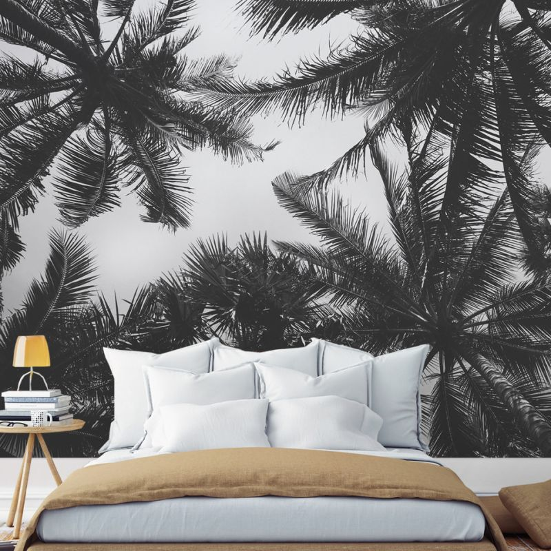Palm Tree Photograph Wall Art